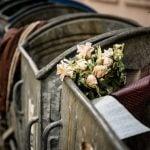 Сміття Чернівців. Чому «пахне» та хто має мити сміттєві баки. Фото