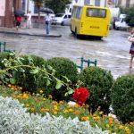 Синоптики прогнозують у Чернівцях короткочасний дощ та грозу