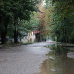Брудні доріжки у парку Шевченка. Чому замулює асфальтне покриття у місці відпочинку