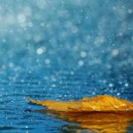 Чи дощитиме сьогодні у Чернівцях та області