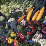 Біля Епіцентру щовихідних у серпні будуть сільськогосподарські та продовольчі ярмарки