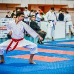 Буковинські каратисти здобули сім призових місць на турнірі в Угорщині