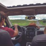 Скільки відсотків чернівецьких водіїв пристібаються пасками безпеки