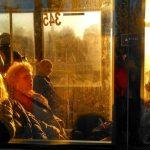 Через масштабну пожежу у центрі Чернівців не ходять тролейбуси