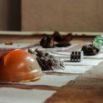 У Чернівцях відкрили мистецьку виставку про кліматичні зміни. Фото