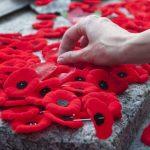 Як у Чернівцях відзначатимуть День пам'яті та примирення. Програма заходів