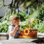 Як у Чернівцях святкували Яблучний Спас. Фото