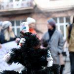 Під Чернівецькою ОДА встановили чорну ялинку, прикрашену пляшками з-під ліків