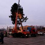 На Соборній площі Чернівців встановлюють новорічну ялинку. Фото