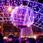 Чернівецька ялинка входить у п'ятірку найдорожчих в Україні