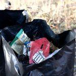 Як у Чернівцях прибирали парк Шиллера. Фото